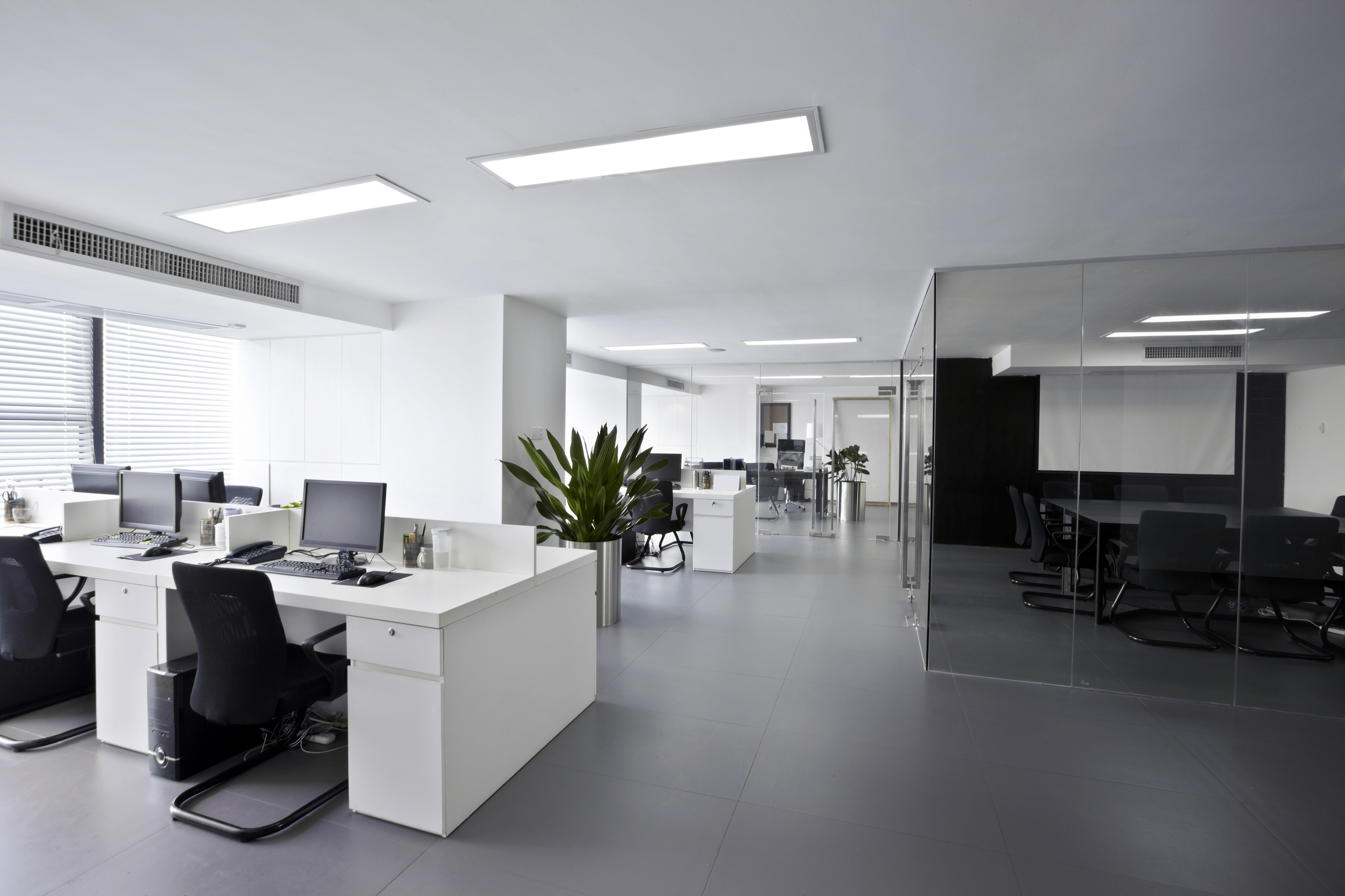 Popular Office Floorings Options